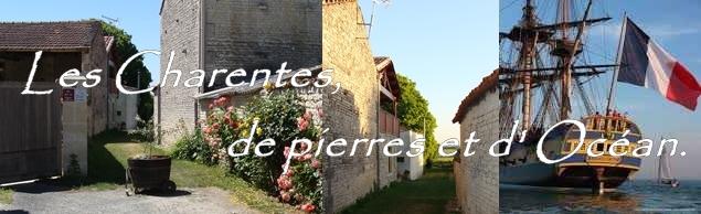 gite_chambre_d_hote_matha_saintonge_dore-bandeau